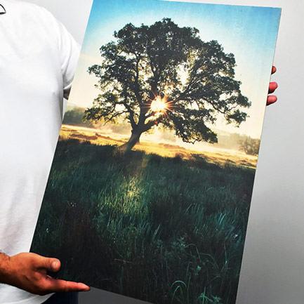 18 inch x 24 inch Romas furniture wood print
